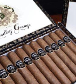 Headley Grange Laguito #6