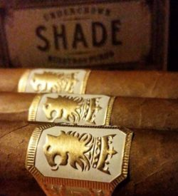 Undercrown Shade Robusto