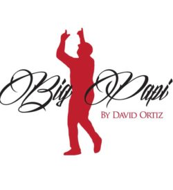 Big Papi by David Ortiz Toro