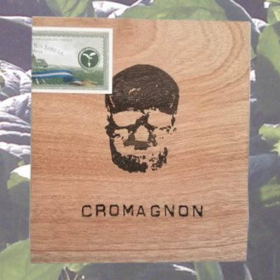 CroMagnon Mandible
